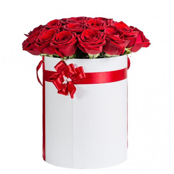 Boxed 25 rote Rosen